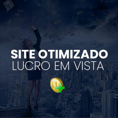 site otimizado lucro em vista
